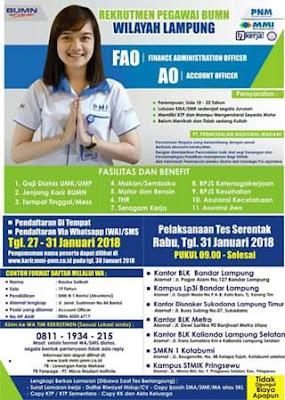 Rekrutmen Pegawai BUMN di  PT. Permodalan Nasional Madani Lampung Terbaru Februari 2018
