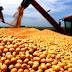 Plantio de soja na Argentina atinge 87,5% da área