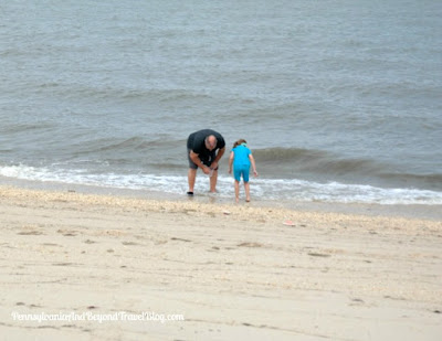 Hunting for Cape May Diamonds on Higbee Beach