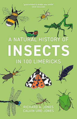 A Natural History of Insects in 100 Limericks book cover