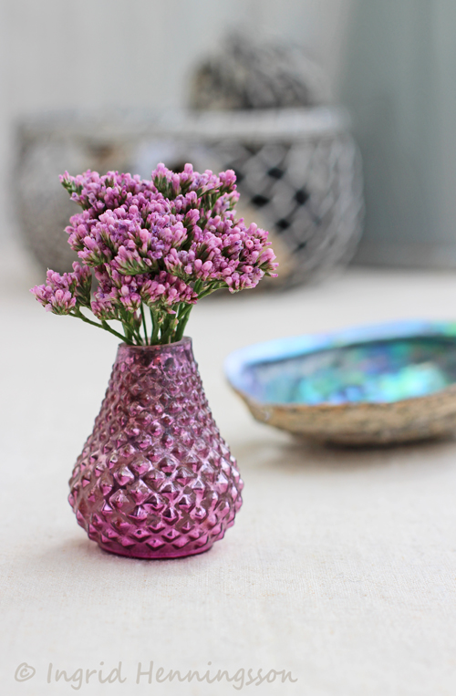 Of Spring And Summer Tiny Blooms 40 Pink Limonium In Mini