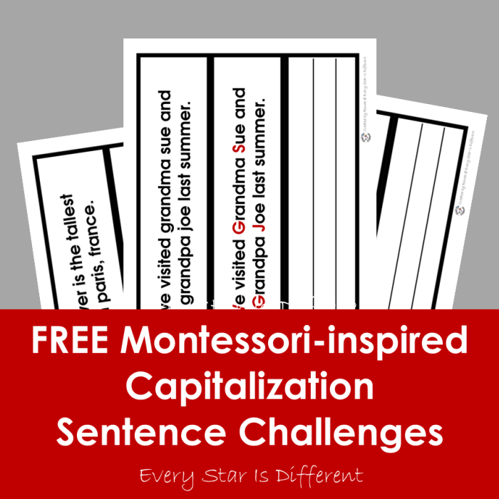 FREE Capitalization Sentence Challenges