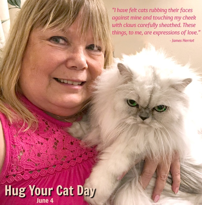 Paula holding silver shaded Persian cat - Truffle