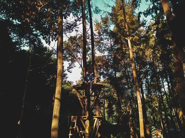 tempat duduk di pohon wisata curug semirang