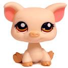 Littlest Pet Shop Multi Pack Pig (#1693) Pet