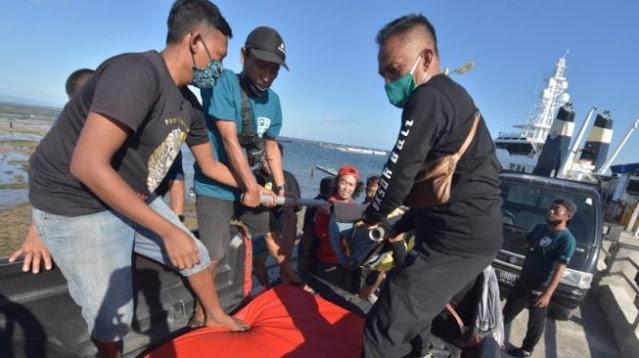 Meresahkan Warga, BKSDA Tutup Atraksi Lumba-lumba Hidung Botol di Sanur