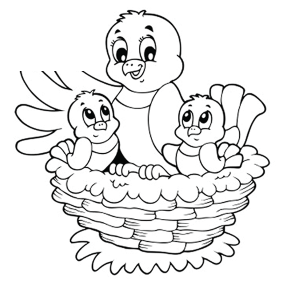 baby birds in a nest coloring pages - photo #4