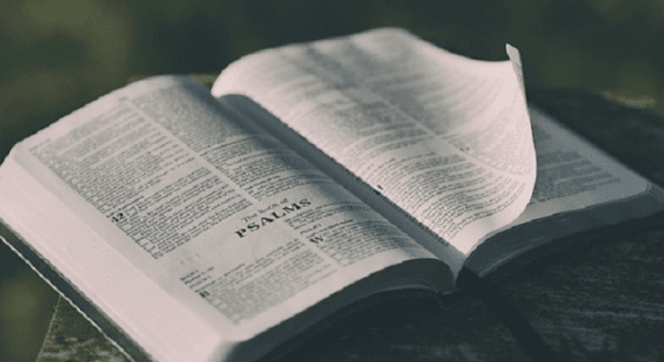 Bacaan Injil Kamis 29 April 2021, Renungan Katolik Kamis 29 April 2021, Kamis 29 April 2021, Renungan Harian Katolik