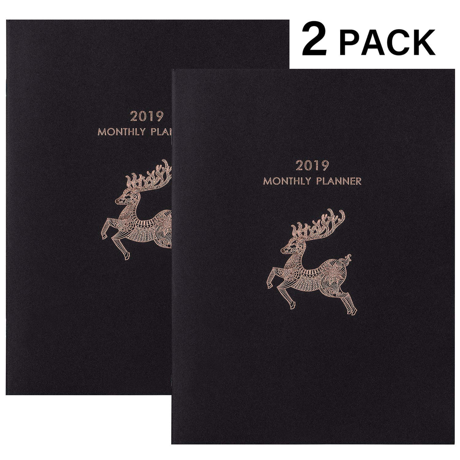 3 99 reg 8 99 free ship 2019 monthly planner 2 pack qpanion