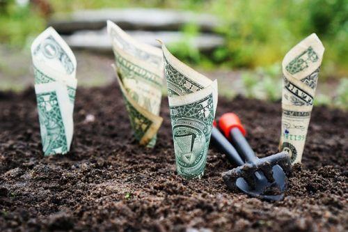 cara investasi reksadana saham