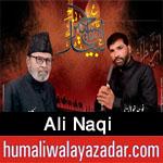 https://aliwalayazadar.blogspot.com/2020/09/ali-naqi-nohay-2021.html