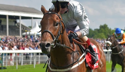 Ill fated Dante Stakes Winner Permian