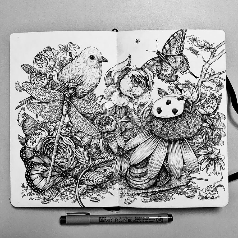 04-A-Day-in-Nature-2-Tim-Ingle-Nature-Drawings-www-designstack-co