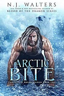 Arctic Bite by N.J. Walters