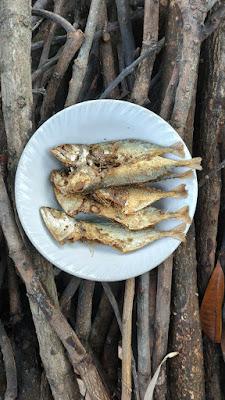 ikan asin berasal dari daerah ikan asin kering masakan ikan asin ikan asin goreng proses pembuatan ikan asin jenis ikan asin yang enak olahan ikan asin kering ikan asin kecil