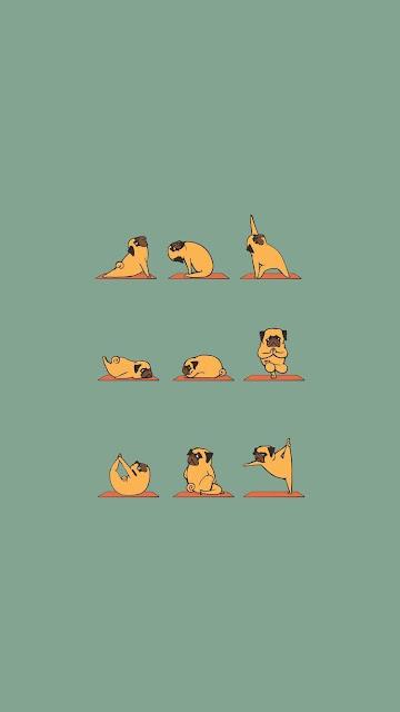 Papel de Parede para Celular, Imagem para Celular Pug Fazendo Yoga, Imagem para Celular Full hd.