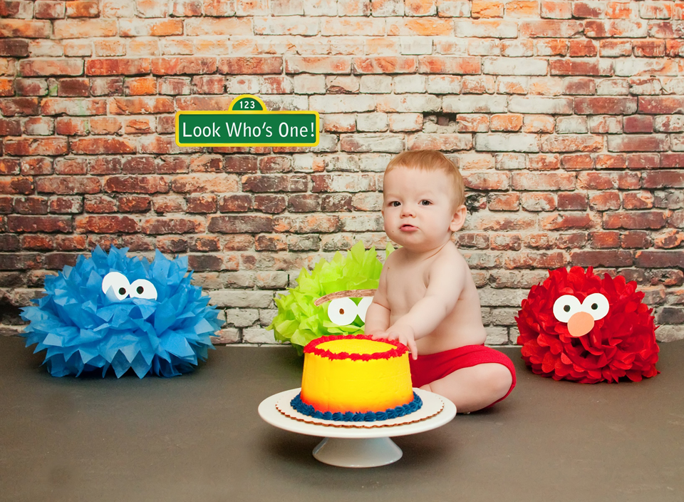 Carrie Saindon Photography Sesame Street Smash Cake Session