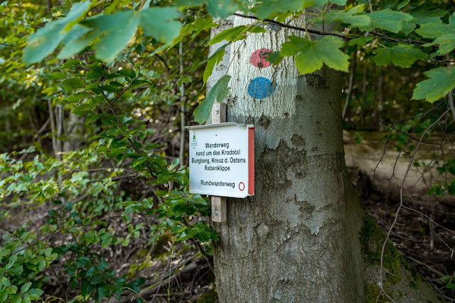 Rundwanderung zum Kreuz des deutschen Ostens | Wandern im Harz | Luchsgehege Bad Harzburg 03