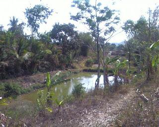Sejarah Desa Leuwigede Widasari Indramayu
