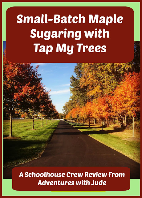 Small Batch Maple Sugaring with Tap My Trees