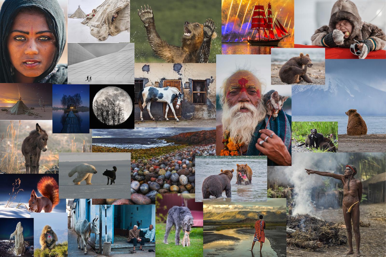 Лучшие фотографии от National Georgaphic Россия за 2016 год