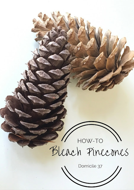 A simple free DIY on how to bleach Pinecones for the holiday season