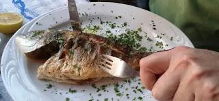 một số loại cá biển có hàm lượng thủy ngân cao chúng ta không nên ăn