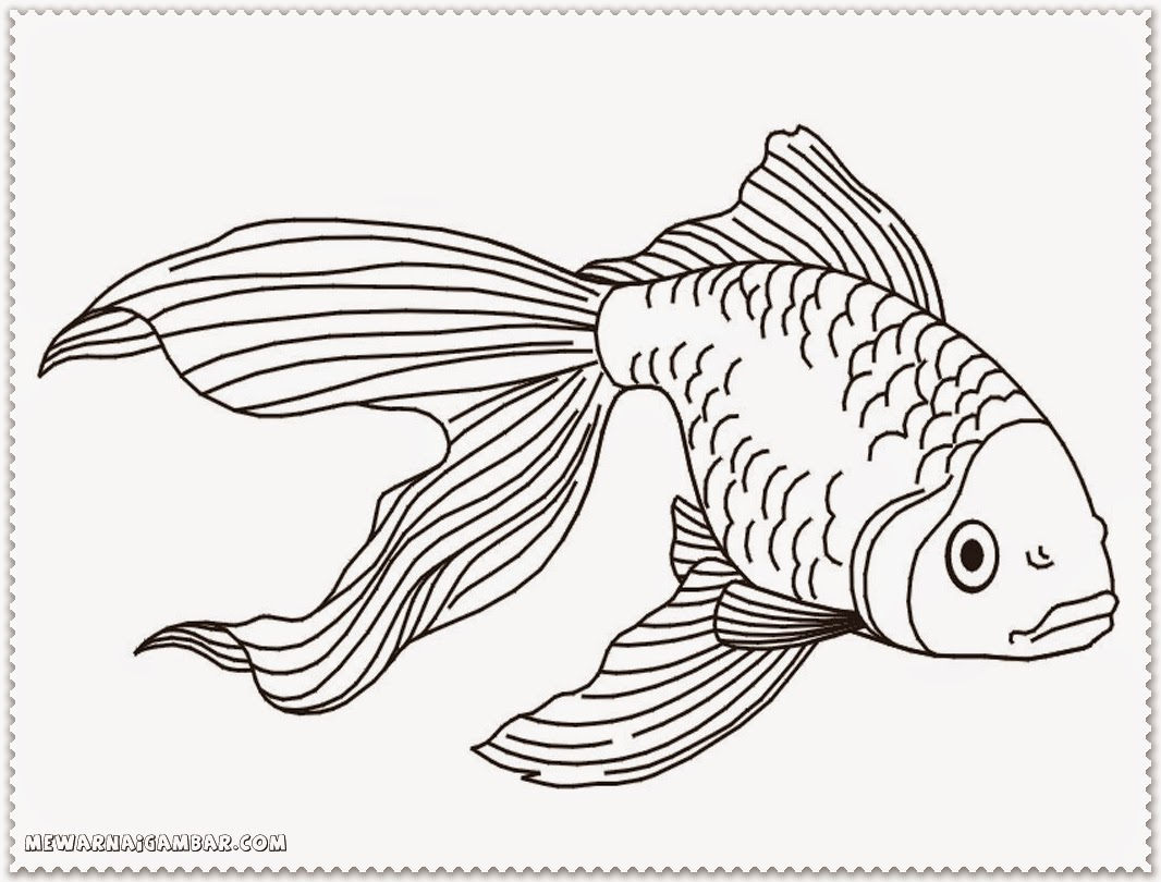 Baby Fish Coloring Pages