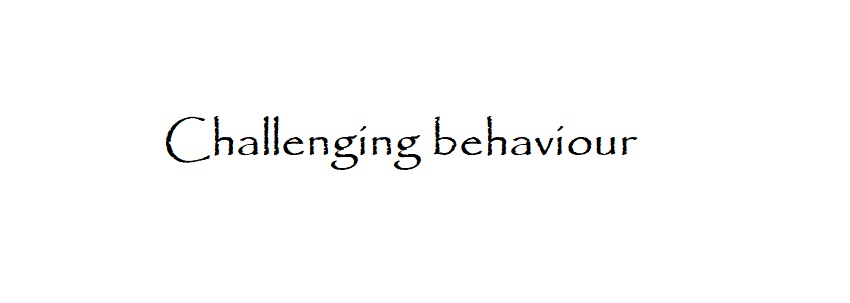 The biggest challenges parents of children with autism or Disruptive behaviour face every single day is challenging behaviors. These can include meltdowns in public, hitting, biting, scratching, self-injurious behavior and the list goes on.