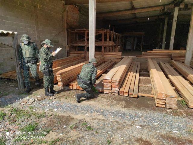 Fiscalização em estabelecimentos que comercializam madeira marca Operação