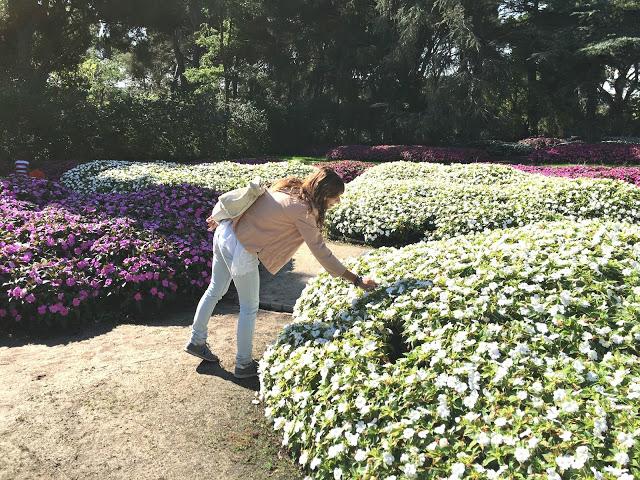 https://mediasytintas.blogspot.com/2019/03/20-cosas-que-puedes-hacer-en-primavera.html