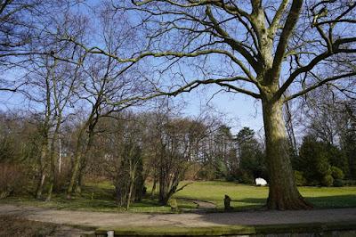 Jardínes de Villa Schroeder