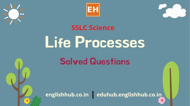 SSLC Science: Q&A of Life Processes