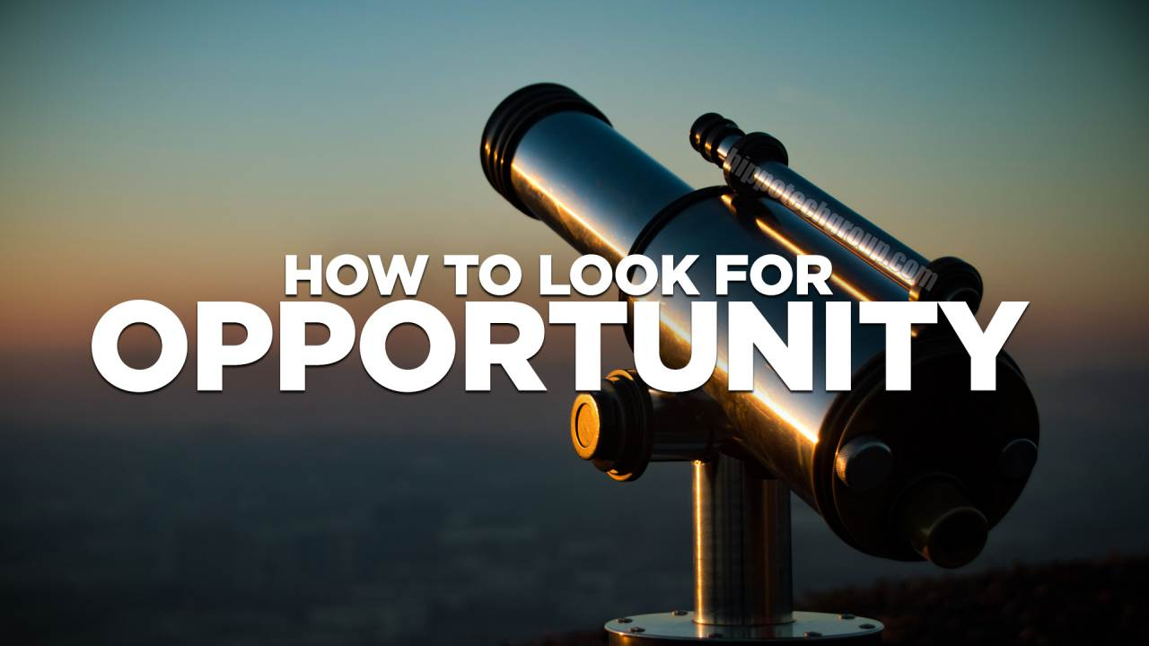 Understand Where the Opportunity is