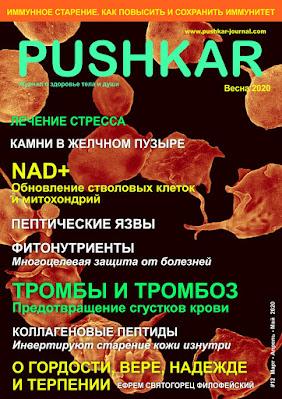 ЖУРНАЛ PUSHKAR №12 ВЕСНА 2020