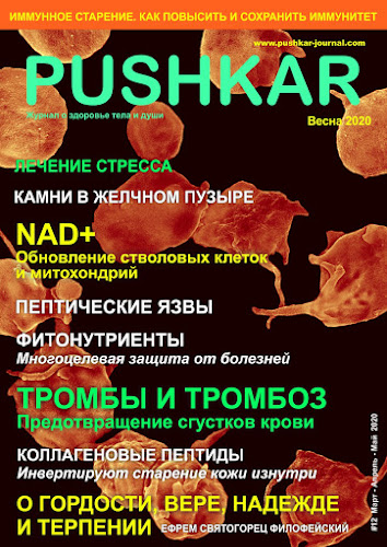 ЖУРНАЛ PUSHKAR #12 ВЕСНА 2020