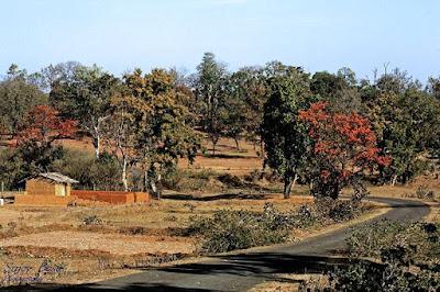 Ramgadh Chhattisgarh Sarguja Chhattisgarh, Hathipole, Sitabengra, jogimara, Turrapani, pauridarwaja, SinghDarwaja.
