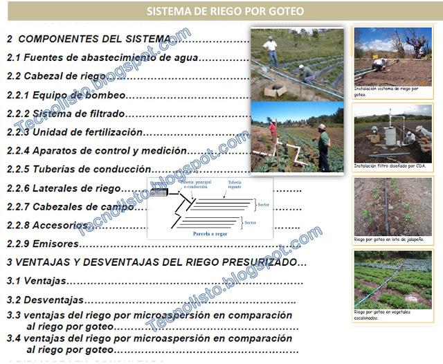 """""""Manual de Cultivo Siembra, sistema de riego por goteo"""""""