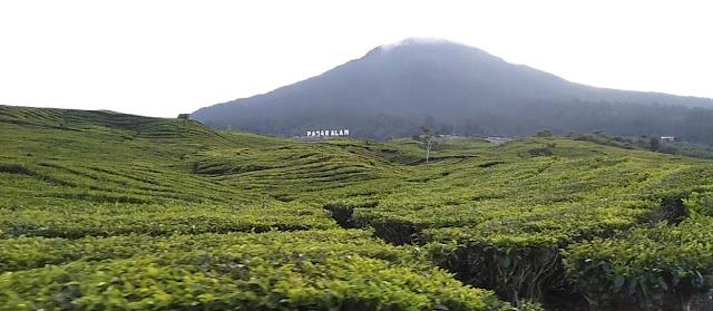 Wisata alam gunung Dempo