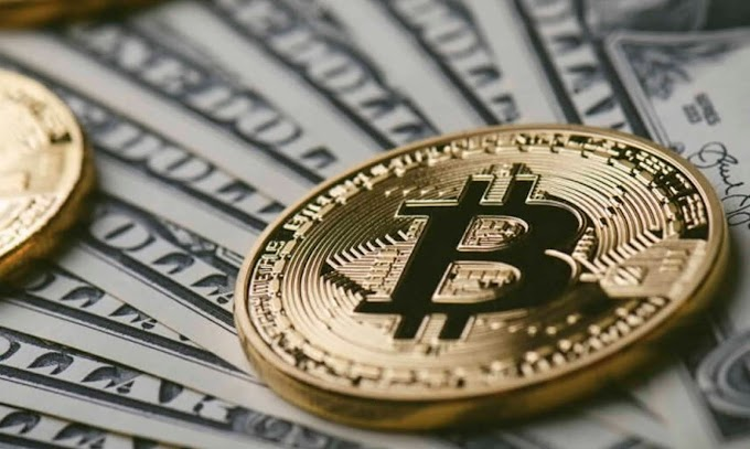 Top 5 Bitcoin Investment Tips For The Beginners