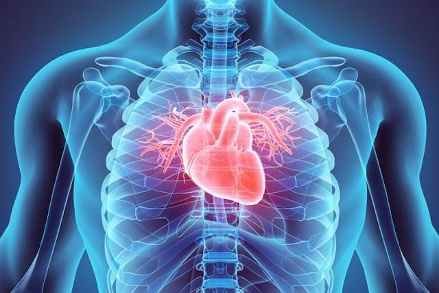 Informasi SehatQ.com, 3 Ciri Utama Jantung Koroner yang Perlu Anda Waspadai