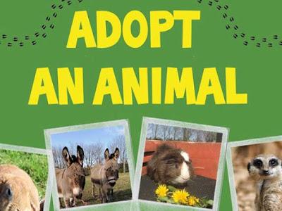 एडॉप्ट-एन-एनिमल  कार्यक्रम | Adpt an animal
