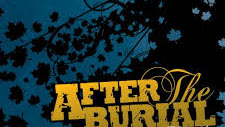Discografía de After The Burial (MEGA)