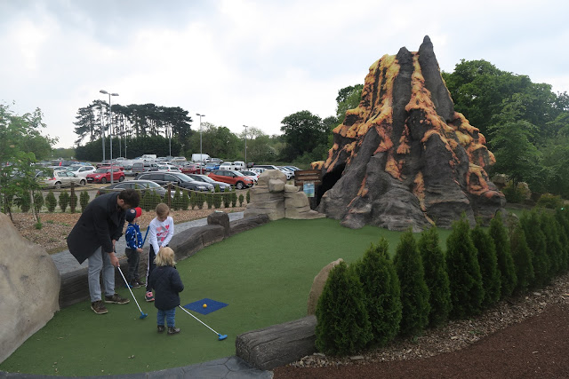 Volcano mini gold Mighty Claws Bournemouth