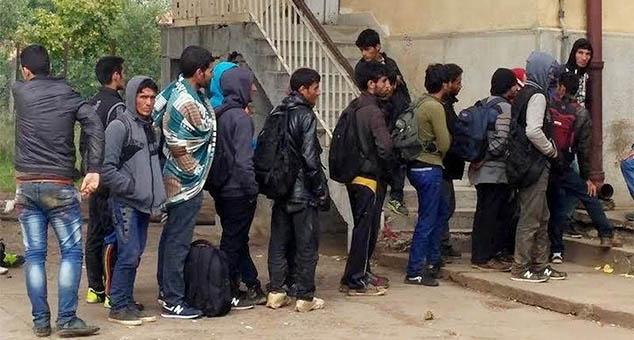 #Мигранти #Србија #БелаПаланка #Криза #Џихад #исламисти #Терористи #КМновине