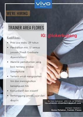 Lowongan Kerja Vivo NTT Sebagai Trainer Area Flores