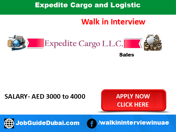 Job Interview | Expedite Cargo and Logistic - Job Guide