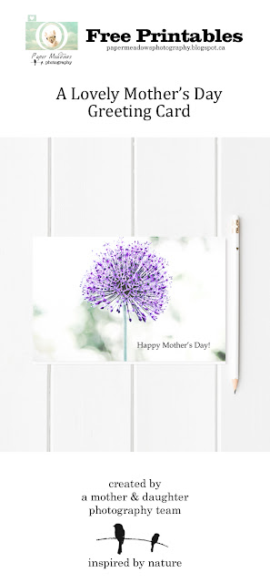 Paper Meadows Photography Blog- Free Printable Mother's Day Card
