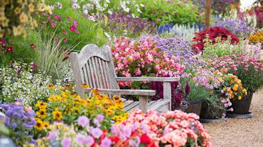 Fantasía Floral en los jardines de Hyde Hall