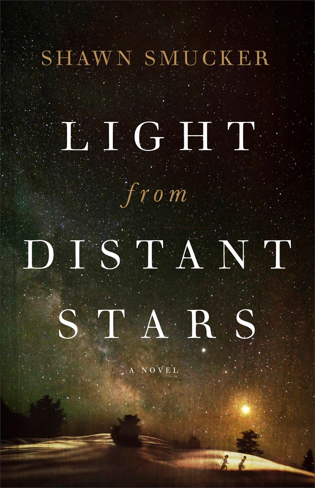 Light from Distant Stars book cover